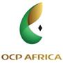 OCP Africa partenaire de l'Institut du monde arabe
