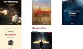 Prix de la littérature arabe