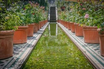 Jardin éphémère de l'Institut du monde arabe - portrait de Zad Moultaka sur le blog de l'IMA