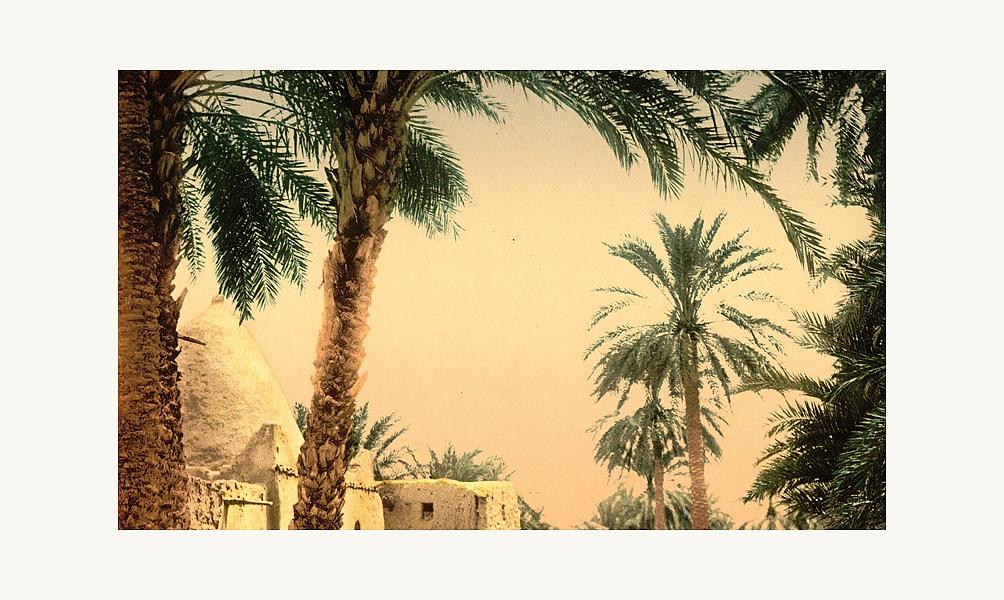 Exposition Biskra, sortilèges d'une oasis à l'Institut du monde arabe