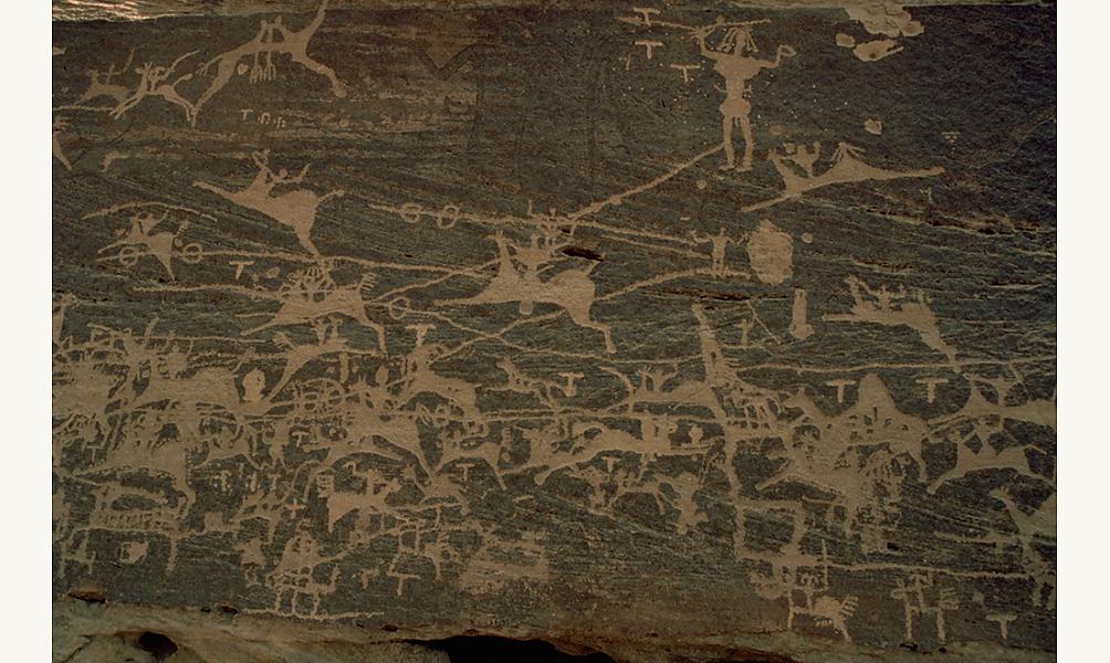Graffitis de la période himyarite au Wadi Chesaha, Arabie Saoudite IMA