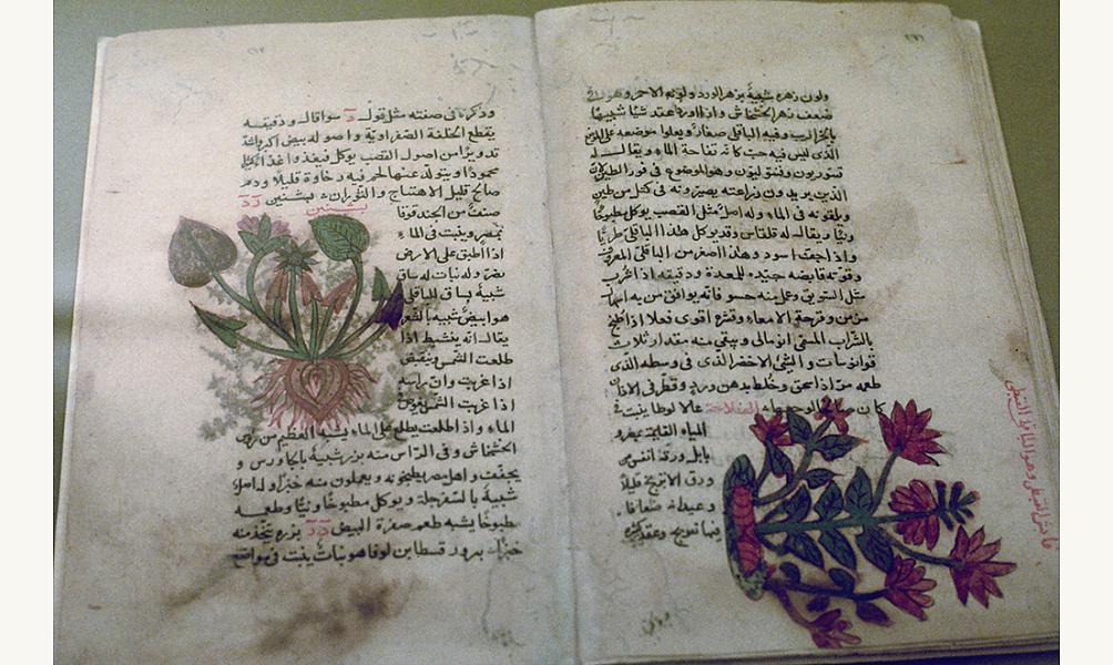 Traité de médecine langue arabe Institut du monde arabe