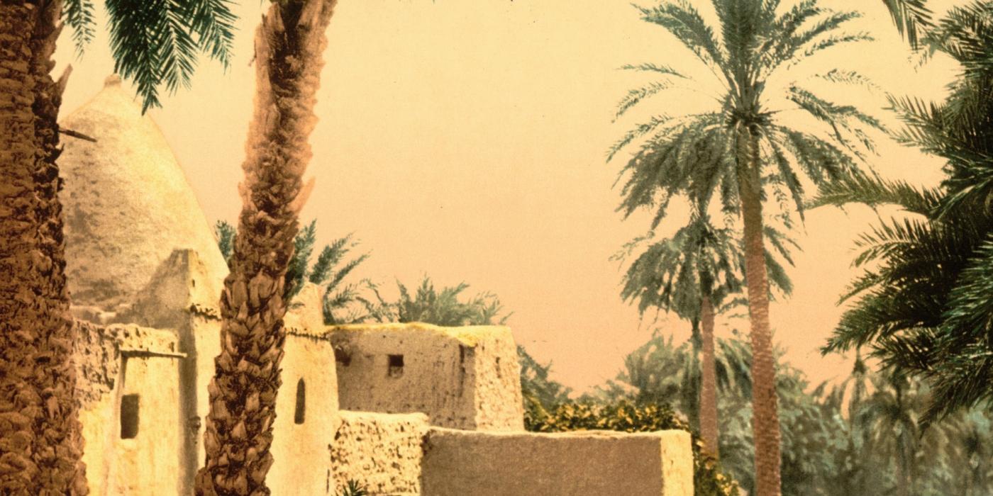 Exposition Biskra, sortilèges d'une oasis à l'Institut du monde arabe à Paris
